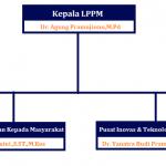 Struktur Organisasi LPPM